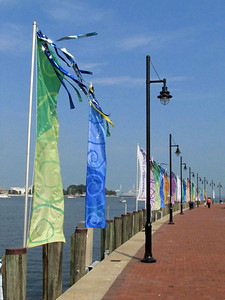 2011 Norfolk Harborfest, Virginia (2)