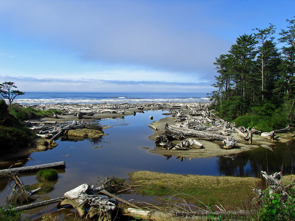 View from Kalaloch Lodge, Forks, Washington (1)