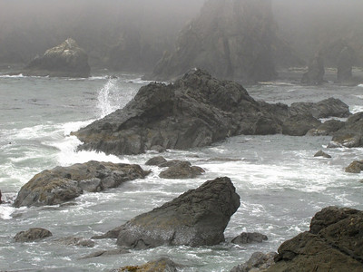 View from Highway 101, Oregon Coastline (8)