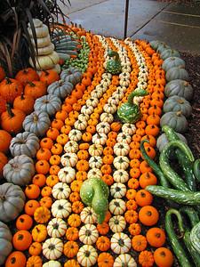 Pumpkin Harvest Display (16)