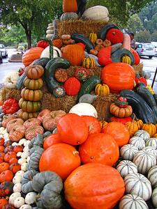 Pumpkin Harvest Display (17)