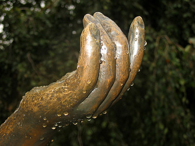 Hands, visual expressions of life (5)