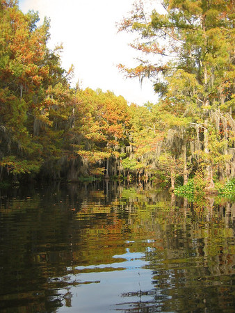 2003 Lake Bistineau, Louisiana (23)