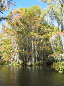 2003 Lake Bistineau, Louisiana (18)