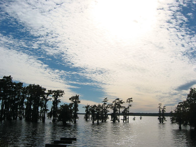 2003 Lake Bistineau, Louisiana (1)