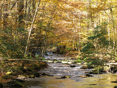 Cataloochee Valley, North Carolina (13)