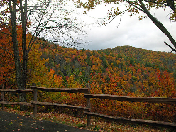 Blue Ridge Parkway, North Carolina (1)