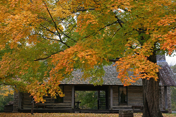 Belle Meade Plantation in Nashville, Tennessee (3)