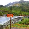 Stevens Creek (Mt  Rainier NP, WA)