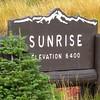 Sunrise Point, Mt  Rainier NP, WA