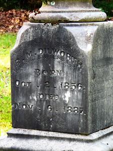 Dilworth Cemetery, Alcorn Co , Rienzi, MS (8)