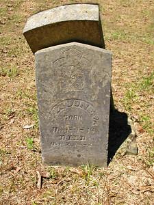 Arnold Bend Cemetery, Swifton, AR (7)