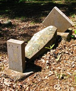 Arnold Bend Cemetery, Swifton, AR (18)
