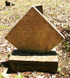 Arnold Bend Cemetery, Swifton, AR (19)