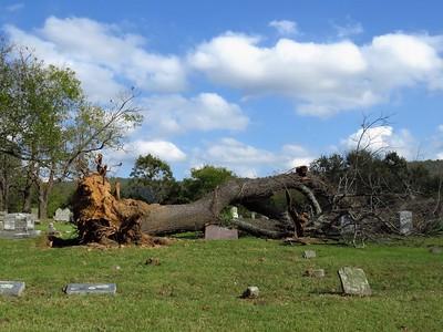 Leslie Cemetery, Searcy Co , AR (5)