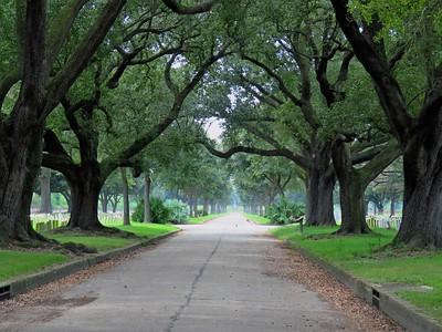 Chalmette Battlefield, New Orleans, LA (2)