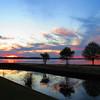 Lake Seminole, Eastbank Cpgr  GA (17)