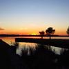 Lake Seminole, Eastbank Cpgr  GA (10)