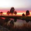 Lake Seminole, Eastbank Cpgr  GA (7)