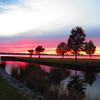 Lake Seminole, Eastbank Cpgr  GA (8)