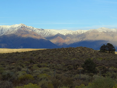 Near French Camp, Inyo Forest, CA (4)