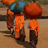 Three Women Head Shot - Near Ranthambore National Park, Rajasthan, India