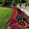Flower Bed at Hillwood Estate