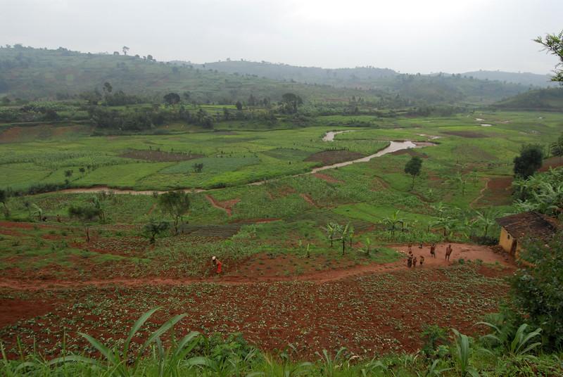 070113 3970 Burundi - on the road to Teza Mountains _E _L ~E ~L