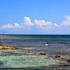 The Beach in front of The Reef House, Roatan, Honduras