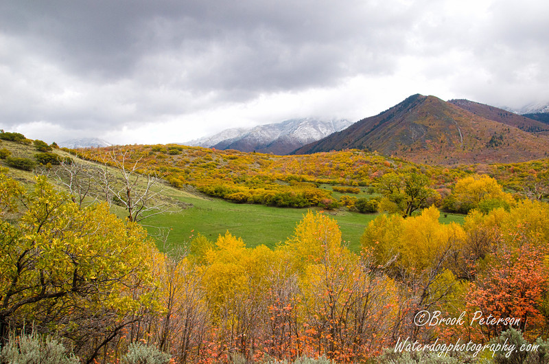 Three seasons in Payson Canyon, Utah.