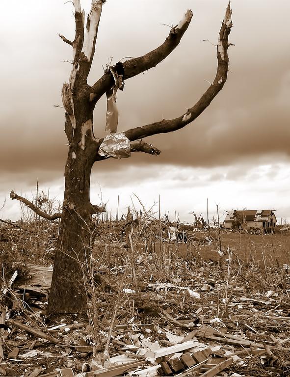 Solitude - April 2011 Jefferson County Alabama Tornado Damage