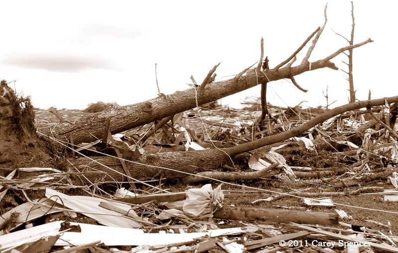 Roped - April 2011 Alabama Tornado Damage near Birmingham Alabama
