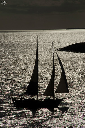 Sails before the storm