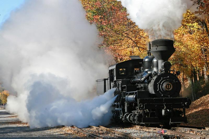 Cass Scenic Railroad Shay #11