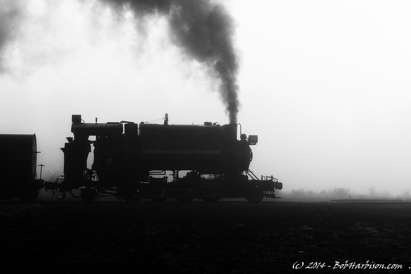 Steam and Fog
