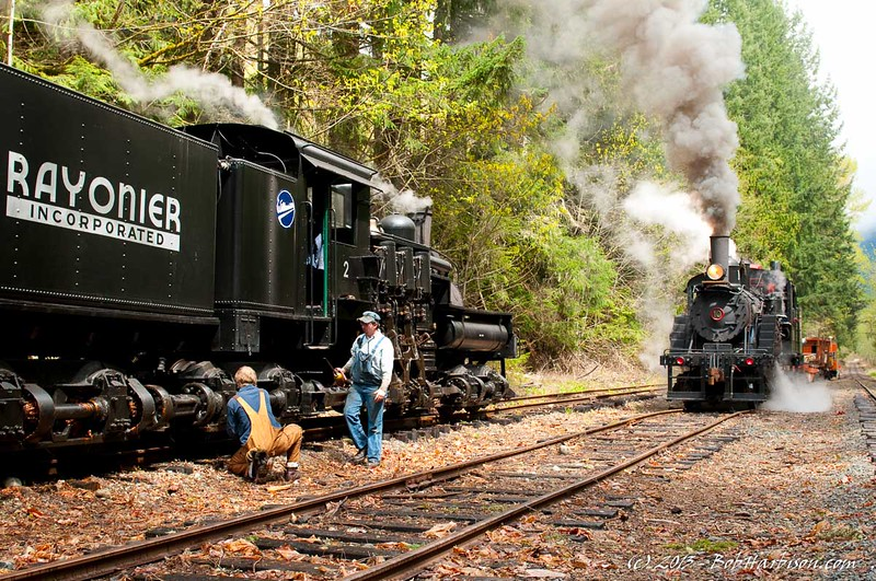 The Mt. Rainier Scenic Railroad has one of the largest collections of logging locomotives in the world. Here a Willamette locoomotive (not a Shay, but nearly identical) waits as a Climax locomotive passes by.