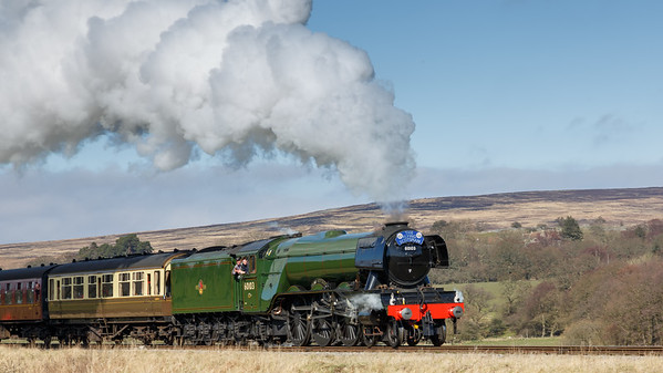 The Flying Scotsman at NYMR.