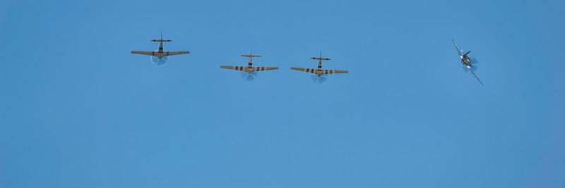 Four Mustangs