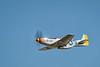 """P-51D Mustang """"Swamp Fox"""""""