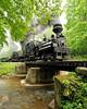 Cass Scenic Railroad 1/ 125s, at f/5.6    E.Comp:0    18mm    WB: CLOUDY 0.    ISO: 800    Tone:     Sharp:     Camera: NIKON D700on: 2010:05:23 09:34:41
