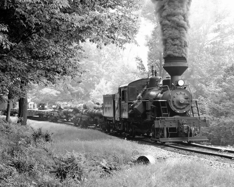 Cass Scenic Railroad 1/ 125s, at f/6.7 || E.Comp:0 || 70mm || WB: CLOUDY 0. || ISO: 800 || Tone:  || Sharp:  || Camera: NIKON D700on: 2010:05:23 11:42:22