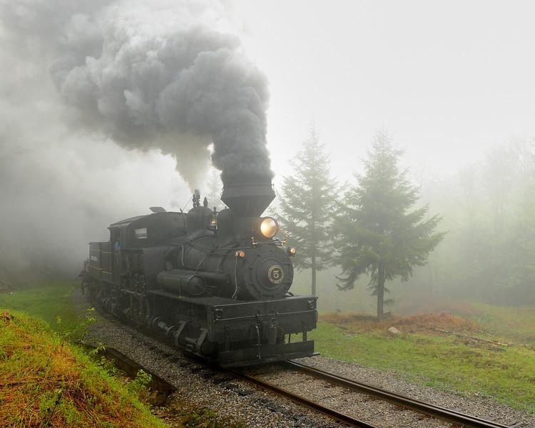 Cass Scenic Railroad 1/ 180s, at f/6.7 || E.Comp:0 || 31mm || WB: CLOUDY 0. || ISO: 1600 || Tone:  || Sharp:  || Camera: NIKON D700on: 2010:05:22 11:36:33