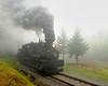 Cass Scenic Railroad 1/ 180s, at f/6.7    E.Comp:0    31mm    WB: CLOUDY 0.    ISO: 1600    Tone:     Sharp:     Camera: NIKON D700on: 2010:05:22 11:36:33