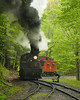 Cass Scenic Railroad State Park 1/ 125s, at f/6.7 || E.Comp:0 || 190mm || WB: CLOUDY 0. || ISO: 1600 || Tone:  || Sharp:  || Camera: NIKON D700on: 2013:05:19 11:26:11
