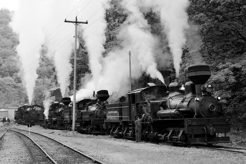 Four Locomotives Under Steam