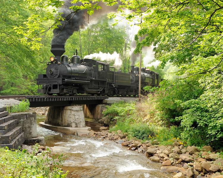 Cass Scenic Railroad 1/ 125s, at f/6.7 || E.Comp:0 || 38mm || WB: CLOUDY 0. || ISO: 800 || Tone:  || Sharp:  || Camera: NIKON D700on: 2010:05:23 09:29:58