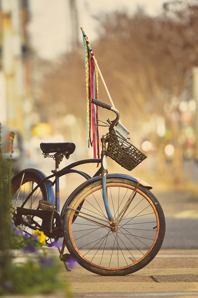 """""""Bicycle With Basket"""""""
