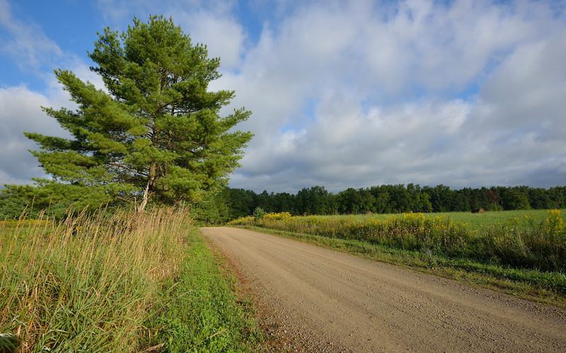 McClure Hill Road above Caneadea.  Nikon D600 and 16-35mm lens (September 2013).