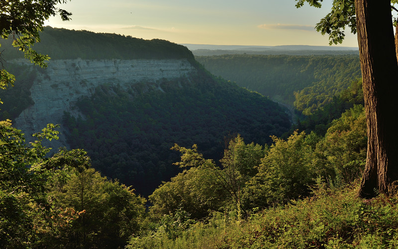 Morning in Letchworth State Park.  Nikon D600 and 16-35mm lens (August 2014).