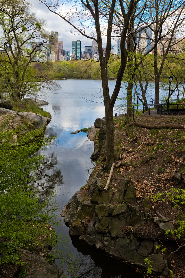 The Lake & The Ramble in Central Park